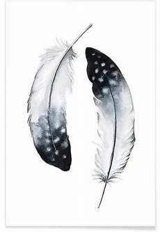 feder schwarz weiß vorlage feathers of my affiche juniqe