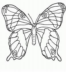 Malvorlage Schmetterling Drucken Schmetterling Malvorlagen Malvorlagen1001 De