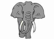 Malvorlagen Elefant Pdf Ausmalbilder F 252 R Erwachsene Elefant Best Ausmabilder 2020