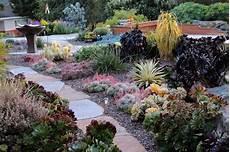 giardini piante grasse per esterno casa moderna roma italy piante grasse ricadenti