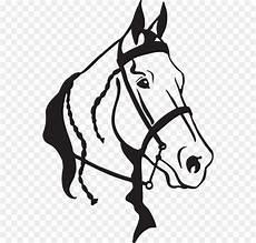 Gambar Kepala Kuda Hitam Putih Gambar Putih