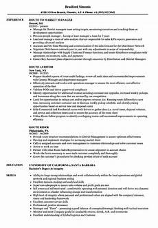 resume builder description 5000 free professional resume