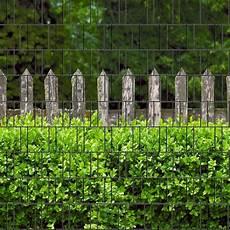 Holzzaun Buxus Bedruckter Zaun Sichtschutz