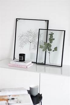 billige bilderrahmen diy floating frame herbarium so bastelt ihr den