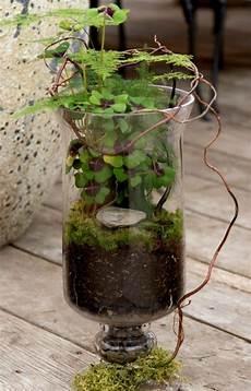 Terrarium De Printemps Dans Un Bocal Sur Pied Container