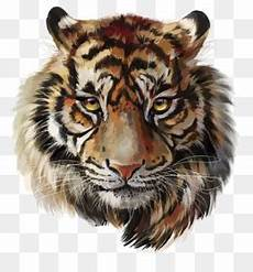 Konsep 73 Gambar Lukisan Pensil Harimau
