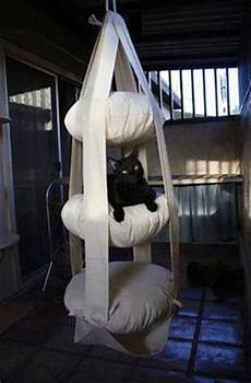 amaca per gatti mille idee casa amaca per gatti