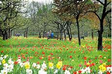 bundesgartenschau berlin marzahn deutsche