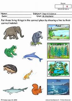 animals living things worksheets 14056 primaryleap co uk where do they live worksheet pendidikan