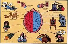 Otak Kiri Dan Otak Kanan Beritaunik Net