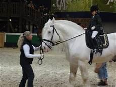 Tamme Hanken Pferd - bei bulle nr 1 live der gr 252 nen woche in berlin