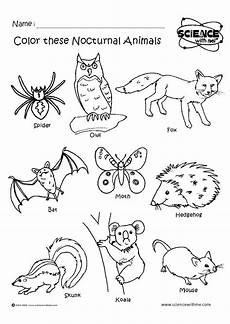 nocturnal animals worksheets 13983 angol feladatok mond 243 k 225 k sz 237 nezők nocturnal animals 201 jszakai 225 llatok