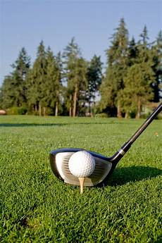 Golf Driver And Vertical Stock Image Image Of