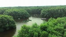 Wisata Murah Hutan Mangrove Pik Ilalangbasah