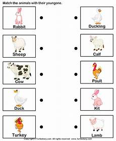 animals and their worksheets for kindergarten 14101 match farm animals to their babies turtlediary baby farm animals and baby