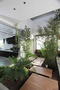 80 Desain Taman Indoor Penyejuk Alami Interior Rumah