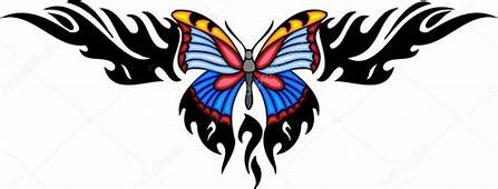 Tribal Butterfly Tattoos Pictures  Iona Morris Photo 3d