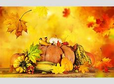 Wallpaper Foliage Autumn Pumpkin Food