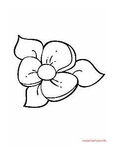 Blumen Malvorlagen Kostenlos Zum Ausdrucken Rossmann Vorlage Blume Malen 605 Malvorlage Vorlage Ausmalbilder