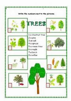 kinds of plants worksheets for grade 1 13700 the trees esl worksheet by monika 79