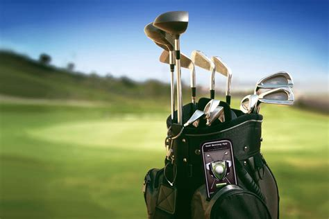Golf Gravid