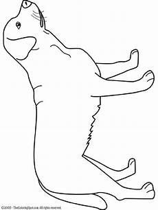 labrador coloring page audio stories for free