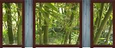 brise vue mural brise vue d 233 coratif bamboo livraison gratuit