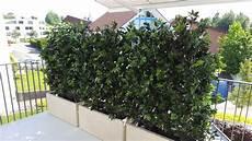 sichtschutz kuenstliche hecke ilex hecke balkon sichtschutz premium kunstpflanzen