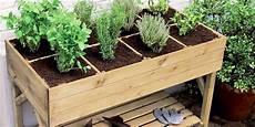 12 plantes et l 233 gumes 224 cultiver sur balcon