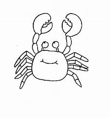 sea animals colouring in pages 17491 crab sea animal coloring page for free printable