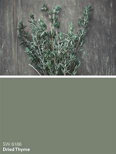 sherwin williams green paint color dried thyme sw 6186 exterior paint colors for house