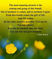 Image result for Amazing Love Quotes