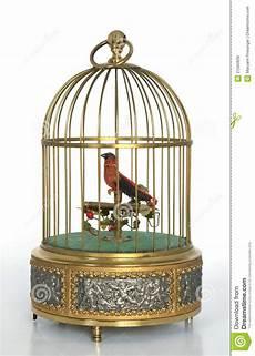 gabbia uccello gabbia di uccello musicale dorata con l uccello rosso