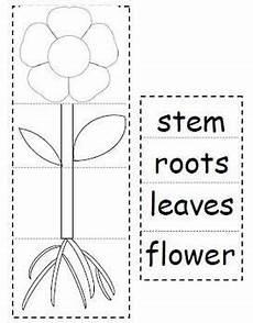 plant parts worksheets for kindergarten 13676 pin en my profession