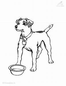malvorlage hund russel ausmalbild hund ausmalbilder f 252 r kinder ausmalbilder