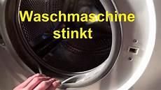 waschmaschine stinkt riecht waschmaschine reinigen sauber