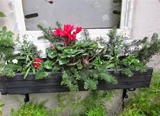 blumenkästen dekorieren winter andie s way window boxes for