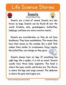 reading comprehension worksheet insects