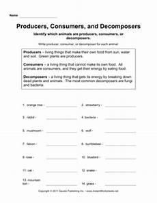 plants as producers worksheets 13617 16 best images of worksheets science poems about pumpkins producers consumers