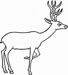 free deer coloring pages