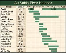 Lochsa River Hatch Chart Point Of View How The Governor Blamed A Janitor For