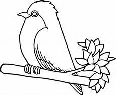 Robin Malvorlagen Lyrics Robin Bird Coloring Page Supercoloring
