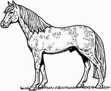 Ausmalbilder Pferde Gratis Ausdrucken Pferdebilder Zum Ausdrucken Gratis Kinderbilder