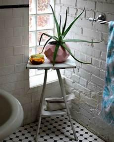 fausse plante salle de bain 35 id 233 es fra 238 ches pour les plantes dans la salle de bains