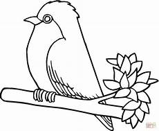 Robin Malvorlagen Pdf Robin Bird Coloring Page Free Printable Coloring Pages