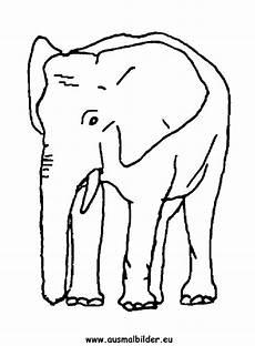 ausmalbild elefant zum ausdrucken