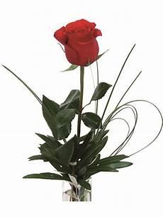 fiori per una donna una rosa rossa da regalare ad una donna speciale
