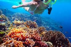 los cabos snorkel tour