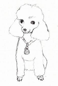 ausmalbilder hunde pudel