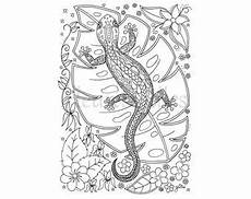 Ausmalbilder Reptilien Malvorlagen Blumen Galaxy Malseite Zum Ausdrucken Handgezeichnete